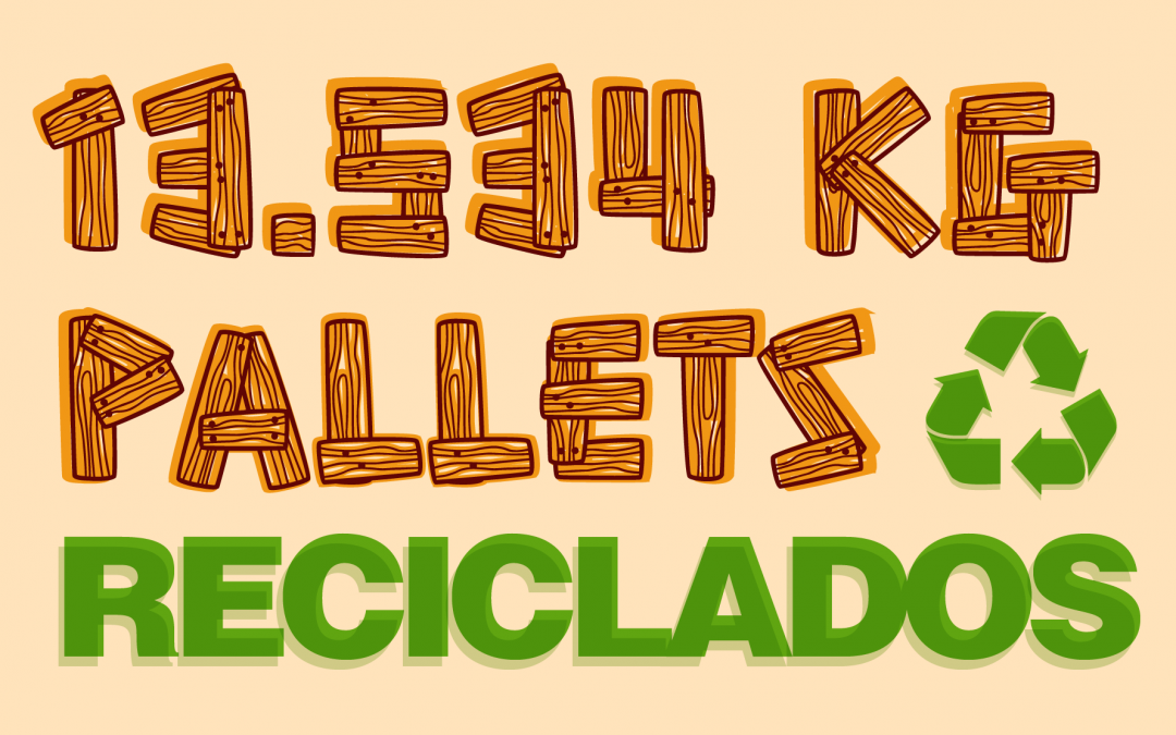 PROYECTO PALLETS